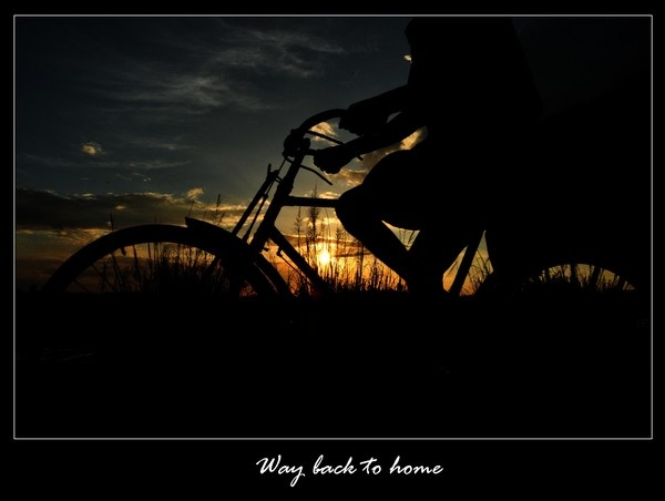 way back to home by Ananda