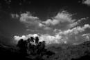 Karm_Black&White