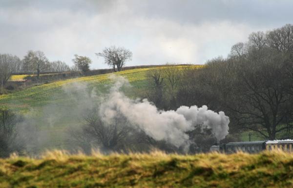 Full steam ahead by Artois