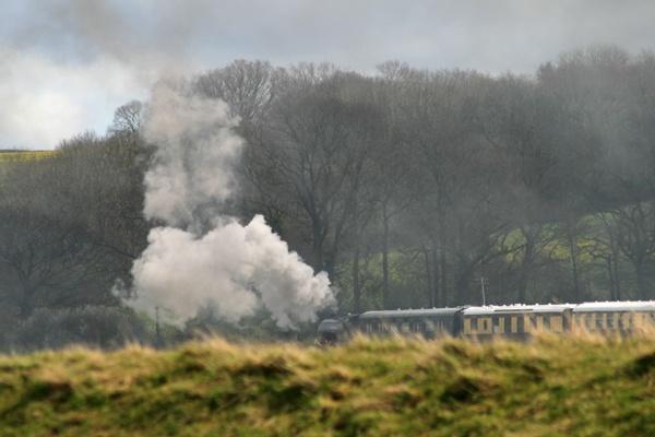Full steam ahead 2 by Artois