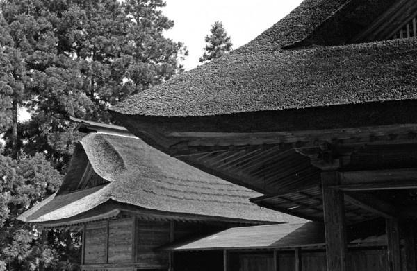 Benkei#11 by paulknight