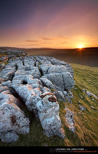 Lichens on Limestone ... by sut68