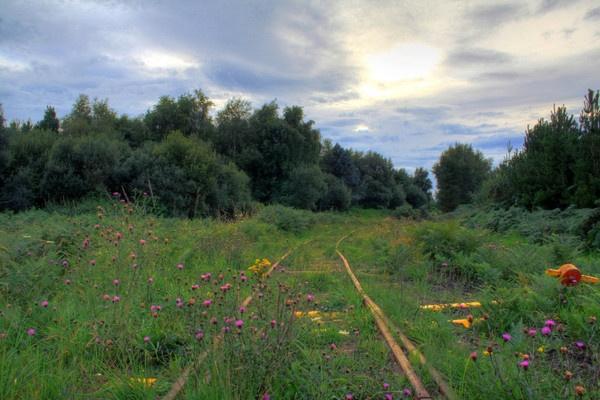 locomotive track by Beladd