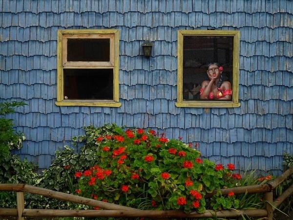 Two windows by rbai2007