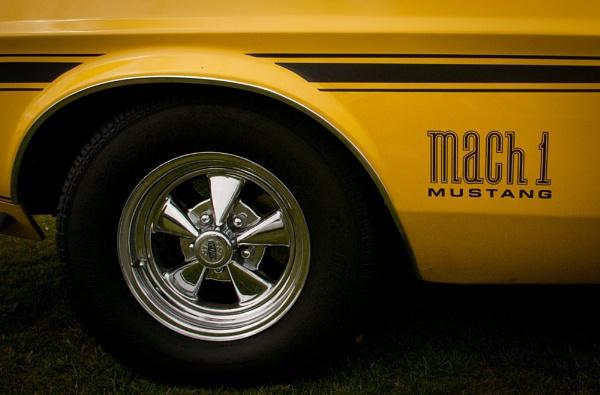 Mach 1 Mustang by davidburleson