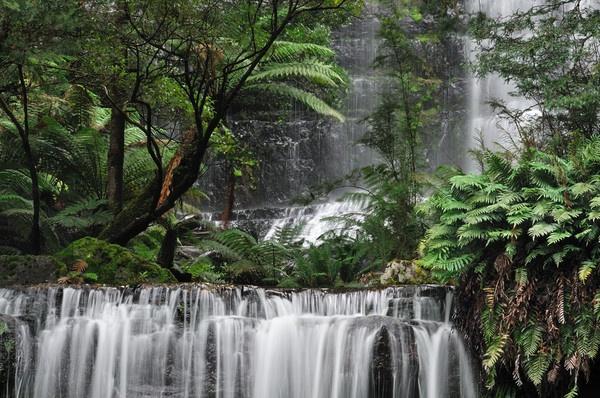 Russell Falls II by Walkthru