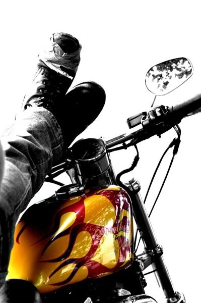 Harley Biker by wag_sfd