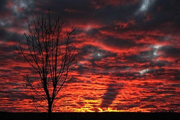Sunrise by Schaune