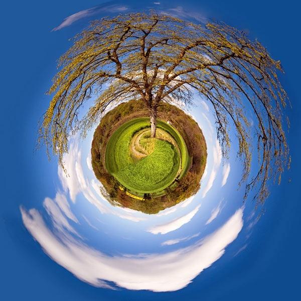 Round the garden by g0wex