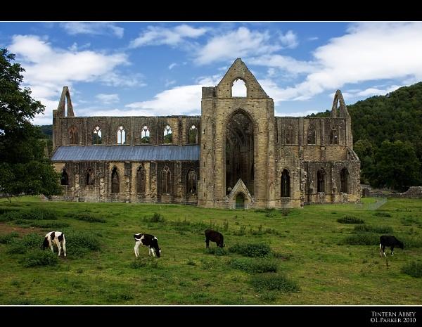 Tintern Abbey by skye1
