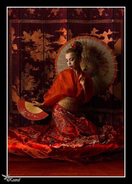 Geisha by Kestrel