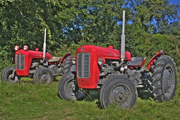 Massey 35\'s by brian_nif2