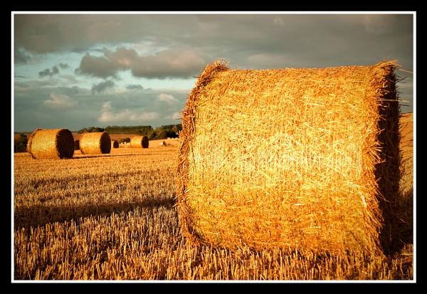 An English Summers Evening by JulieLetten