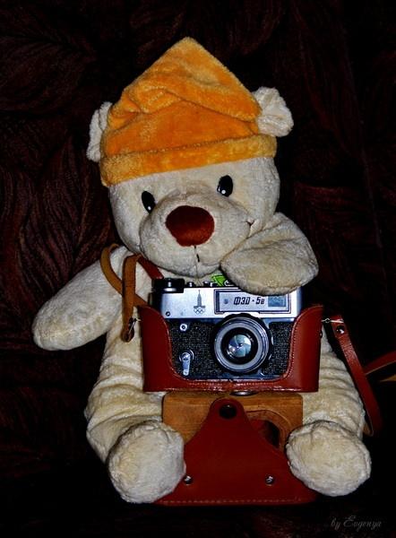 Teddy-Photographer by Evgenya