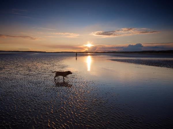 Walking the Dog by Graham_Aylard