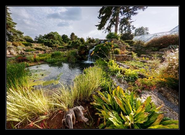 Summer Garden by gregl