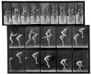 Eadward James Muybridge - leapfrog sequence by Pete