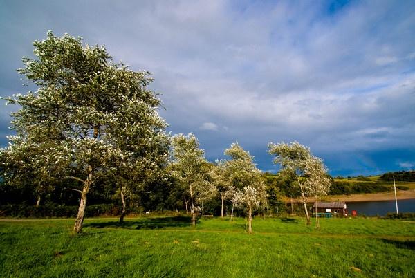 Wimbleball Lake Somerset by CTee