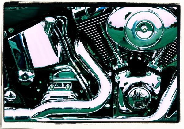 Harley by PeterN67