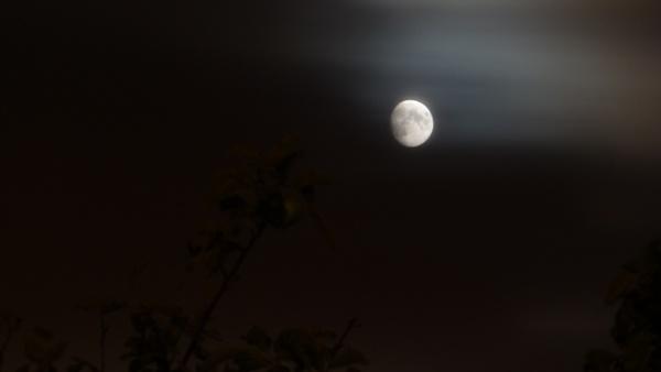 Moon light by seaviewlou