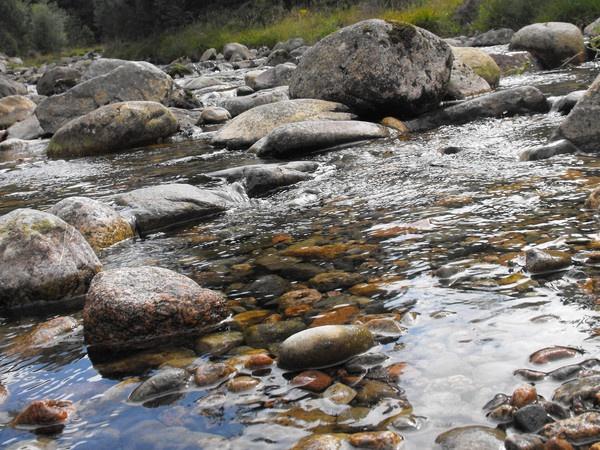 Highland Stream by bigwulliemc