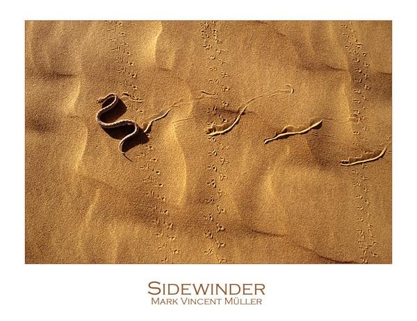 Sidewinder by MarkVMueller