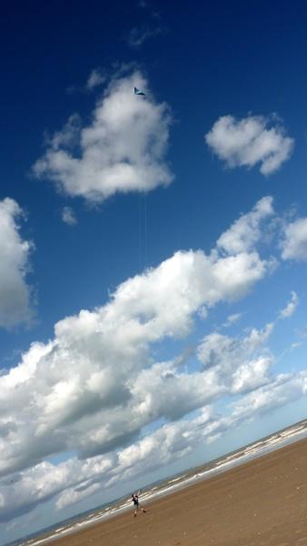 Spot the kite by seaviewlou