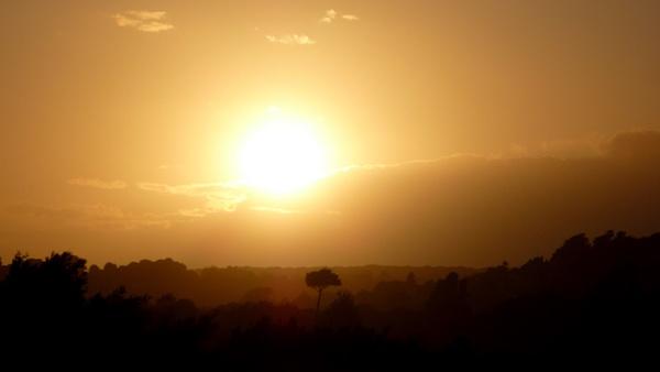 Soft Sunset by seaviewlou