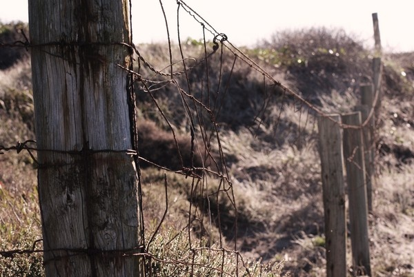 Fenced off .. by courtneytonnacole