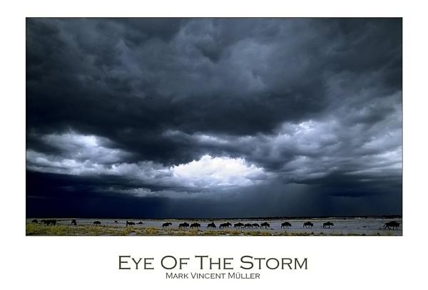 Eye Of The Storm by MarkVMueller