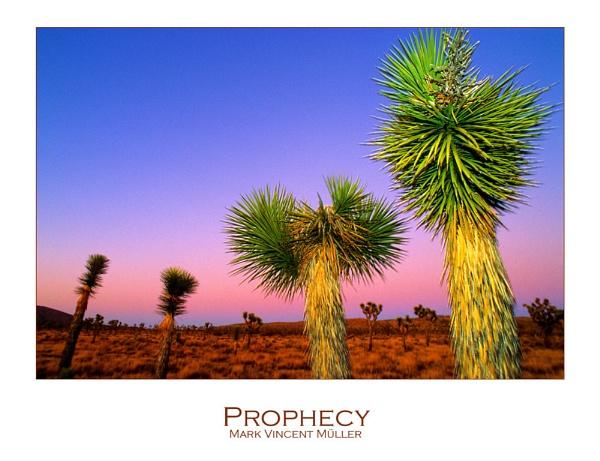 Prophecy by MarkVMueller