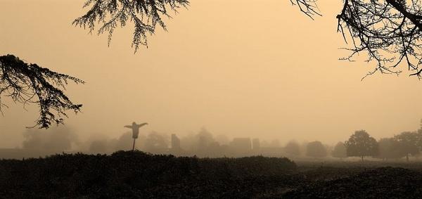 Scarecrow by Stonemushroom