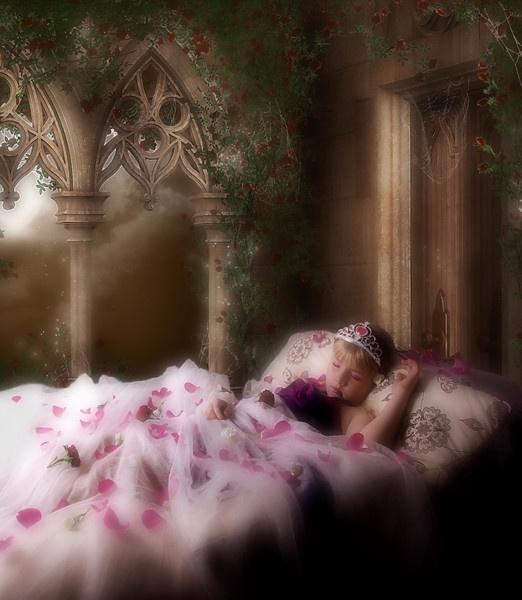 The Sleeping Beauty by BilT