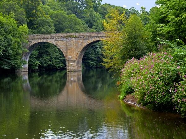 Bridge Reflection by daffodil555