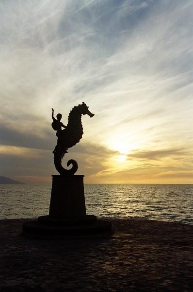 Seahorse Sunset by Brentlee