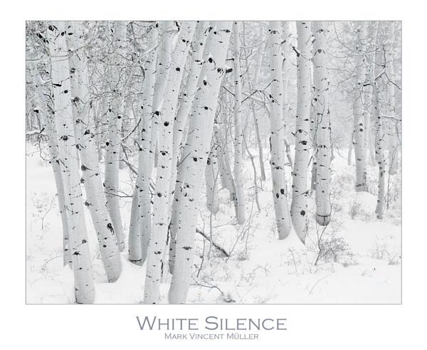 White Silence by MarkVMueller