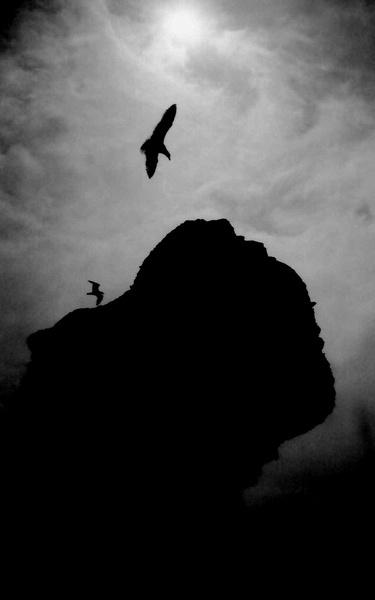 Grief 2. by Aldo Panzieri