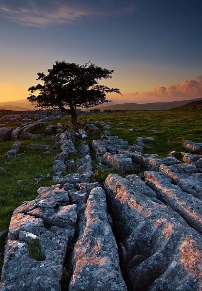 Yorkshire SLT by MrsS