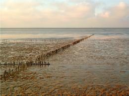 Friesian shore