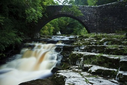 Dale's River