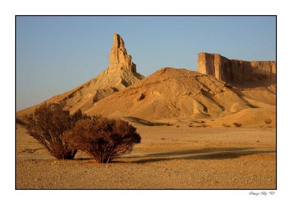 Saudi Arabia by DM1
