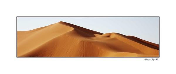 Saudi Arabia Too by DM1