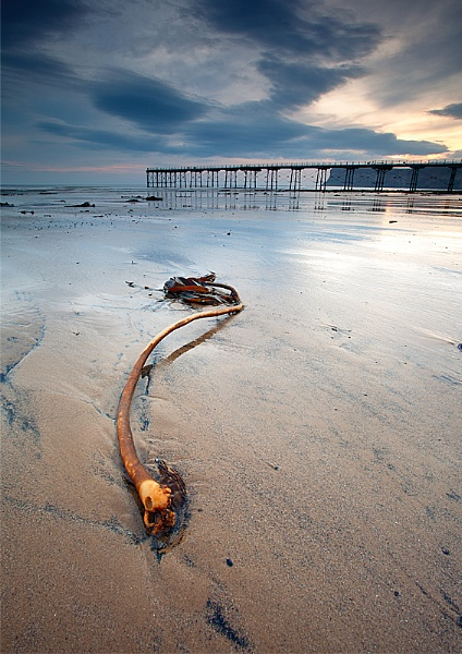 Saltburn Blues by michaelcombe