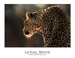 Lethal Spots