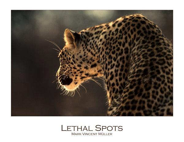 Lethal Spots by MarkVMueller