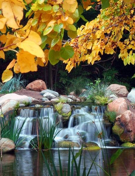 Descanso Garden - Fall color by john_w168