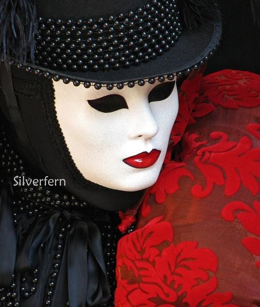 Venice Carnival by Silverfern