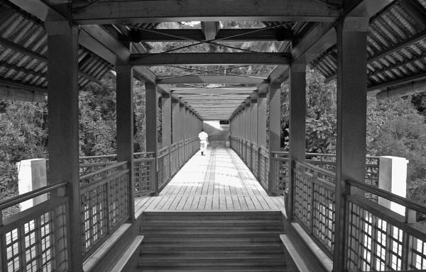 The Bridge by jkennedy