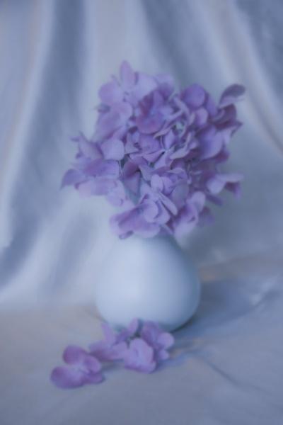 Blue by harryw