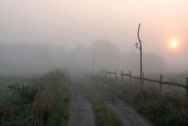 morning fog by sepulturek